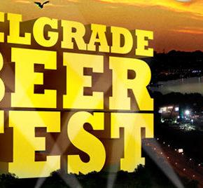 beer-fest-2013